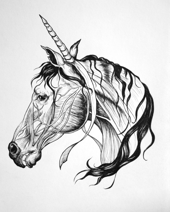 work_horse_unicorn